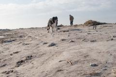 Sand på strand